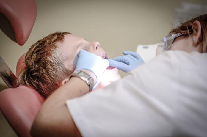 dentist, patient, dental care